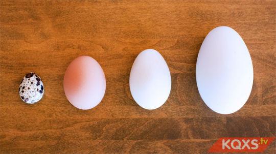 Bà bầu ăn trứng gà như thế nào là tốt cho sự phát triển của thai nhi?
