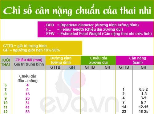 chieu-dai-xuong-dui-thai-nhi-theo-tuan-tuoi