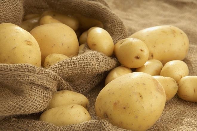 khoai tây tươi