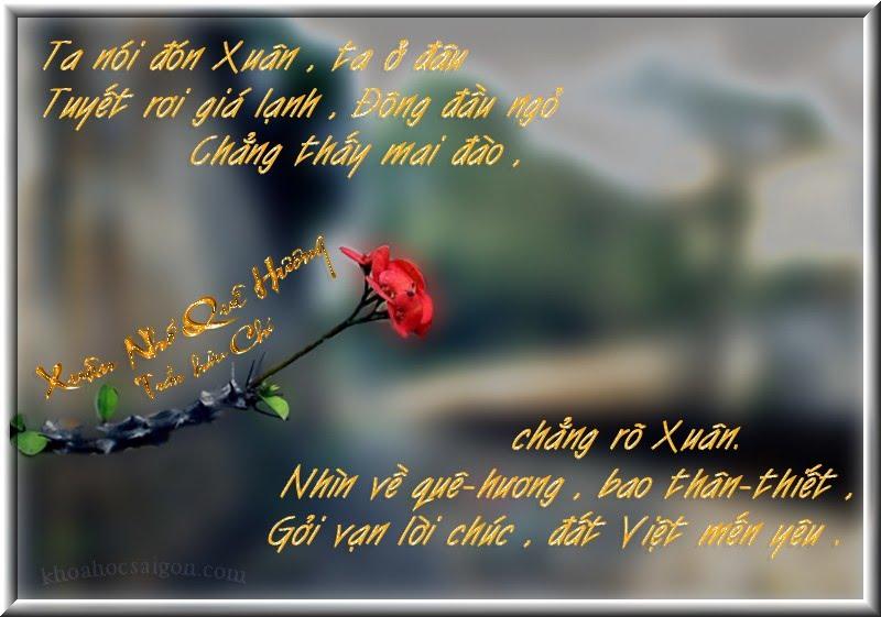 Những câu nói danh ngôn hay về lòng yêu nước quê hương đậm đà tình yêu thương