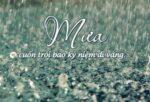 Những câu nói nói buồn về mưa hay ý nghĩa nhất chia sẻ nhiều trên mạng xã hội