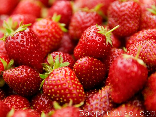 Những loại trái cây mẹ bầu nên ăn hàng ngày để tốt cho thai nhi