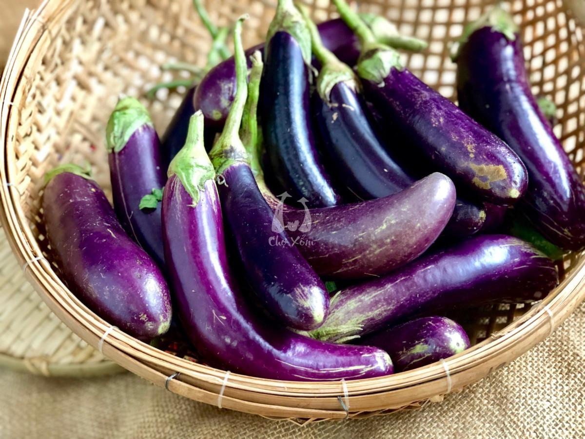 Những lợi ích không ngờ của củ cải và cà tím đối với sức khỏe mẹ bầu