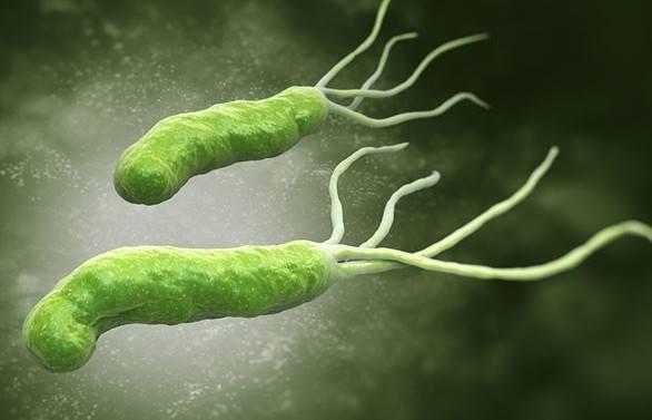 Những triệu chứng và cách điều trị ngộ độc thực phẩm ở trẻ em hiệu quả