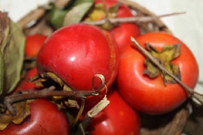 Hồng là loại trái cây cung cấp rất nhiều dinh dưỡng