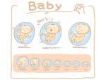 Quá trình phát triển cân nặng của thai nhi theo tuần tuổi