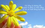 Status hay về nắng trong tình yêu và cuộc sống ý nghĩa và sâu sắc nhất