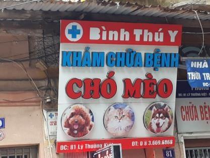 Phòng khám bác sĩ thú y Bình Thú Y