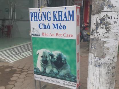 Phòng khám Thú y Bảo An Pet Care