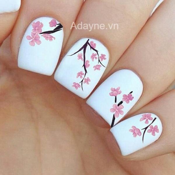 mẫu nail tết vẽ hoa anh đào trên nền sơn trắng