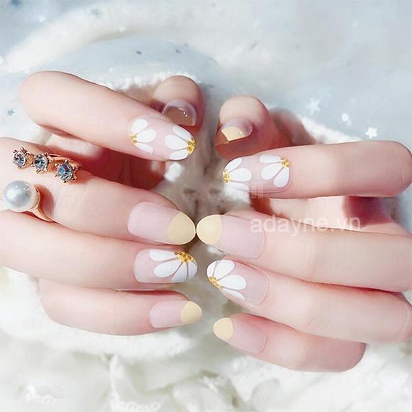 Đơn giản mẫu nail đẹp họa tiết hoa cúc trên nền móng trơn kết hợp vẽ nửa móng đẹp mê mẩn