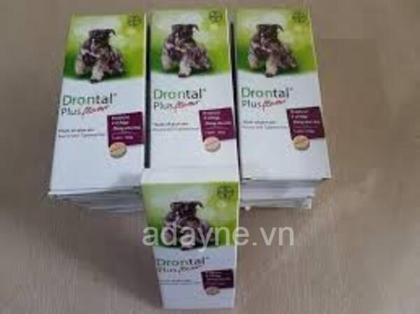 Thuốc xổ giun Drontal Plus Bayer - thuốc tẩy giun cho chó con loại nào tốt